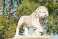 Lion statue around vorontsov palace in odessa Royalty Free Stock Images