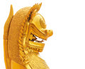 Lion statue isolated white background thai style on Royalty Free Stock Images
