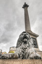 Lion statue trafalgar platz london großbritannien Stockbild