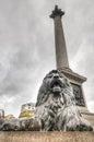 Lion statue trafalgar square londres reino unido Imagem de Stock