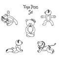Lion teddy yoga black