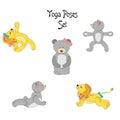 Lion teddy yoga