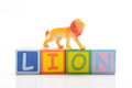 Lion toy on white background Stock Images