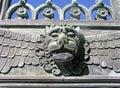 Lions Head Stock Image