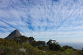 Lions head in cape town Royalty Free Stock Photo