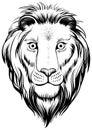 Lions head, vector illustration.