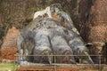 Lions paw at Sigiriya Royalty Free Stock Photo