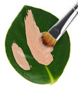 Liquid foundation stroke brush over green leaf Royalty Free Stock Photos