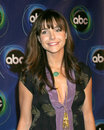 Lisa sheridan abc tv tca party wind tunnel pasadena ca january Royalty Free Stock Photo