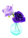 Lisianthus blue lovely in a vase Stock Image