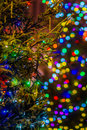 Lit up christmas tree in the street multicolored blurred background night scene vertical format photography Stock Image