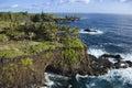 Litorale roccioso del Maui. Fotografie Stock Libere da Diritti