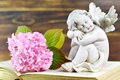 Little angel and flower Royalty Free Stock Photo