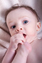 Little baby boy portrait of a with blue eyes naked on a blanket has his foot in his mouth Stock Photography