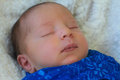 Little baby boy portrait of a sleeping peacefully Royalty Free Stock Image