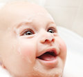 Little baby taking bath Stock Images