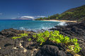 Little Beach, Makena State Park, south Maui, Hawaii, USA Royalty Free Stock Photo