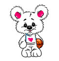 Little Bear basketball  talisman character Stock Photography