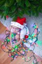 Little beautiful girl in santa claus hat sitting under the christmas tree among garlands this image has attached release Stock Photography
