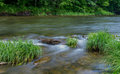 Little Beaverkill River - Famous trout stream in New York Royalty Free Stock Photo