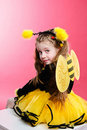 Little Bee Royalty Free Stock Images