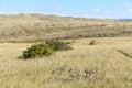 Little Bighorn Battlefield Nat...