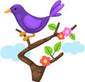Little bird on branch illustration of isolated Stock Images
