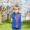 Little blond kid boy having fun on blooming cherry garden Royalty Free Stock Photo