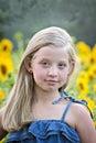 Little blonde girl in sunflower field Royalty Free Stock Photo