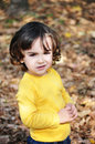 Little boy in autumn park cute portrait Stock Photo