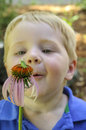 Little boy in awe of insect on flower looking at an a coneflower Royalty Free Stock Photos