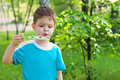 Little boy blowing soap bubbles Stock Photo