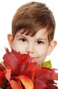 The little boy with a bouquet of autumn leaves Stock Photos