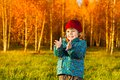 Little boy clapping laughing three years old standing on the lawn in the autumn park and hands Stock Image