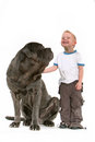 Little Boy con el perro grande Foto de archivo