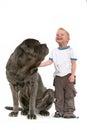 Little Boy con il grande cane Fotografia Stock