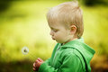 Little boy with dandelion Stock Photography