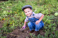 Little boy digging in garden Royalty Free Stock Photo