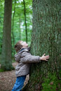 Little boy embracing big tree in the forest trunk Royalty Free Stock Photos