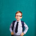 little Boy in eyeglasses. Royalty Free Stock Photo
