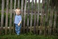 Little boy with fence outdoors funny photo Stock Photos