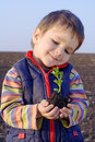 Little boy on field holding the plant Royalty Free Stock Photo