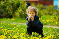 Little boy in flowers field Royalty Free Stock Photo