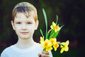A little boy gives a bouquet to his mother or father mum dad s day concept toning for instagram filter Stock Photography