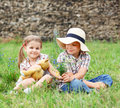 Little boy gives flowers to the little girl Stock Images
