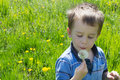 Little boy in green field with blow ball Royalty Free Stock Image