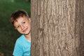 Little boy hide and seek nature Stock Images