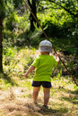 A little boy hiking and walking at the summer forest Royalty Free Stock Photo