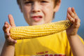 Little boy holding corn on the cob close up shot of young a sweet Royalty Free Stock Photography