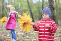 Little boy holds maple leaflets and girl play with leaflets yellow on left shallow depth of field focus on Stock Images